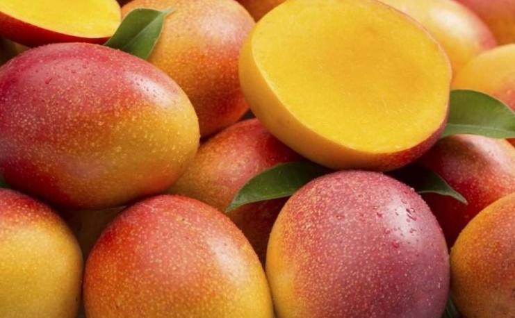Afrika mangosu