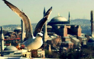 İstanbul'u Bir Turist Olarak Gezmek