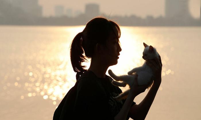Evcil hayvan sahiplenmek