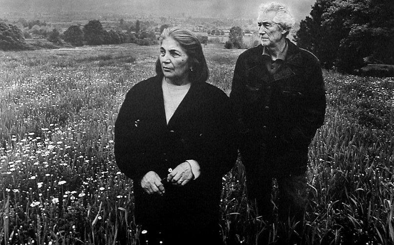 Koza (1995)