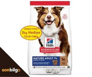Hills köpek maması