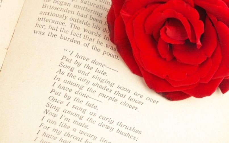 En iyi şiir paylaşım siteleri